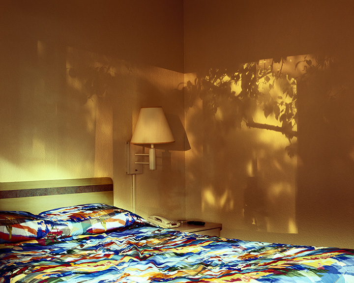http://www.conorwootenphoto.com/files/gimgs/19_treecoloredit.jpg